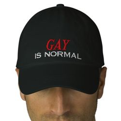 Gay is normal